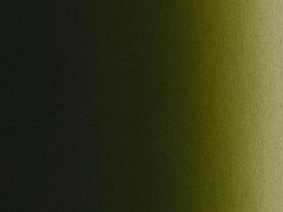 Createx Illustration Vile Green, 30 мл